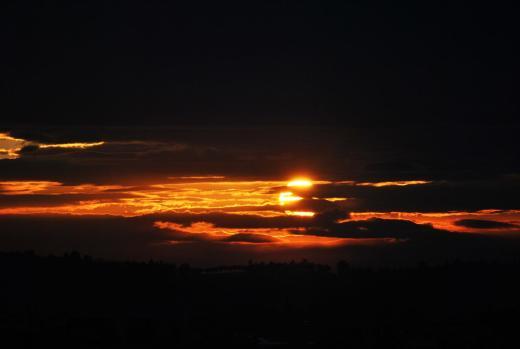 Cesena apr 2014 023 (Large)